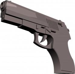 The Final Word on Gun Control