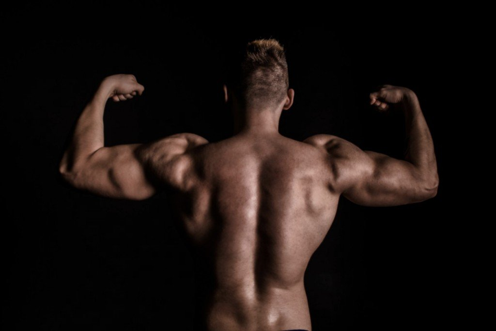Developing The Deltoid Muscles How To Get Big Strong Shoulders