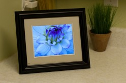 Choosing The Right Digital Photo Frames