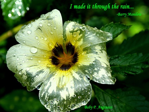 rain in our life