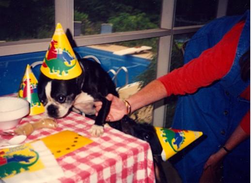 Happy Birthday, Bill Murray
