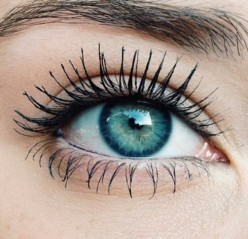 Top Mascaras Every Makeup Lover Should Own