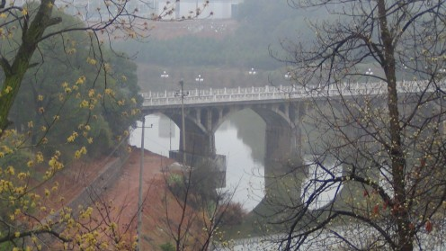 The Bridge on Campus