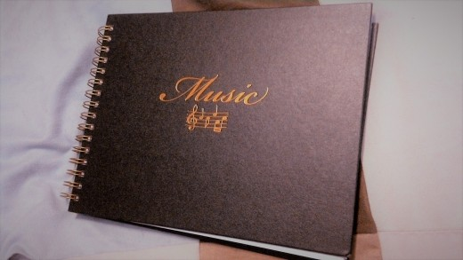A blank ledger allows you to both get your lyrics written down as Well as providing space for musical notation.