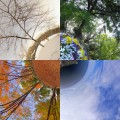 Changing of the Seasons: Astronomical vs. Meteorological