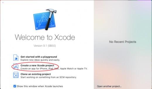 Xcode Prompt