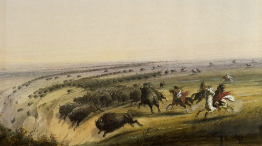 It is true that various Plains Indians would occasionally chase buffalo over a small cliff, but Miller probably never saw this scene and therefore exaggerated it a bit.