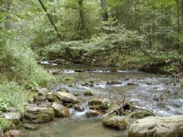 A soft Sided Tackle Box would be ideal for traversing this rocky stream.