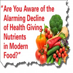 Five A Day Rises To Ten A Day The Truth Revealed About Our Food.