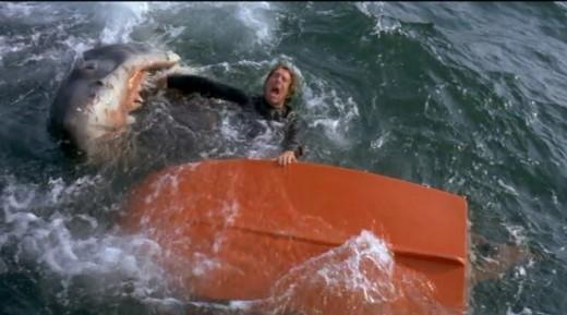 This is why you don't go out to sea in a small boat