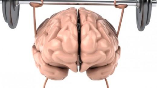 Brain & Memory Health