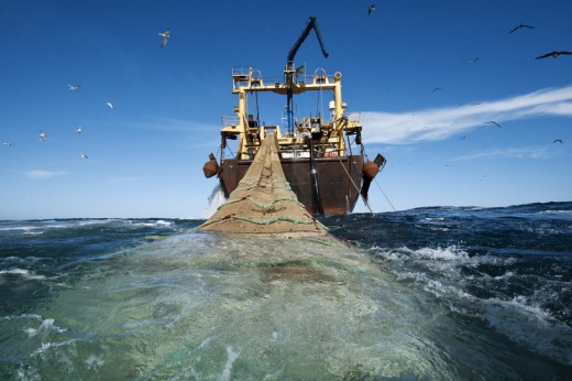 Industrial fishing off of West Africa, including much which is illegal, plays an important part in driving migrants north to Europe.