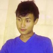 Array Shimmer profile image