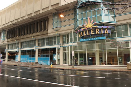 The Galleria in New York, a contemporary of Lansing and Meridian Malls formerly featuring plants, waterfalls and glass elevators!