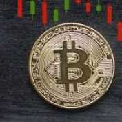 BitCast profile image