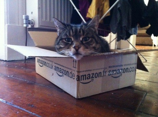 This is one product you won't find as a warehouse deal. Amazon doesn't ship live animals.