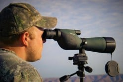 The Most Important Hunting Tips for Deer