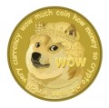 Dogecoin Optimism and Critique