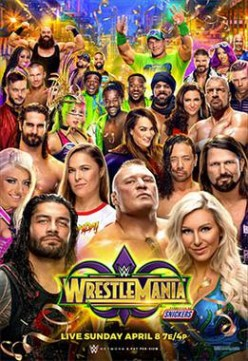 WWE Wrestlemania 34 Review