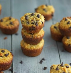 Cane Sugar Free Pumpkin Chocolate Chip Muffins