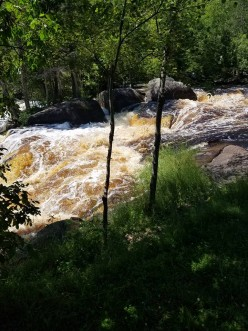 Family Outdoor Hiking Trips in WI