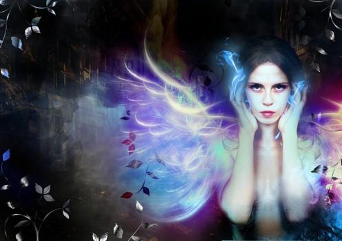 What Do Fairies Like to Do?