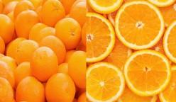 Details about Oranges