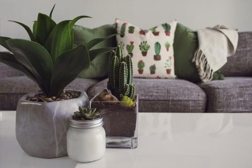 Declutter Your Home the KonMari Way (Feel the Joy)