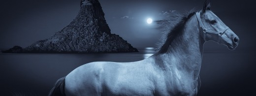 The horse is a majestic creature and was sacred to many deities in ancient times.