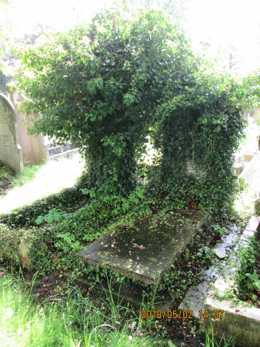 Strange how ivy will grow on one monument and not on its neighbour, although these two have been given a 'neighbourly' touch. Descendants might have forgotten them,  Mother Nature hasn't