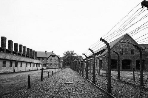Reality of the concentration camps and what was done to the people there.
