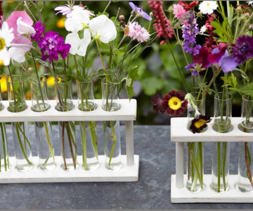 For a unique twist on a traditional bouquet give mom flowers in a test tube vase