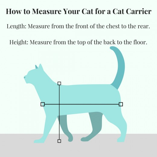 A chart showing how to measure your cat for a cat carrier.