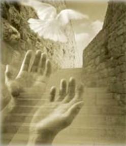 Daily Mass Reflections - 5/8