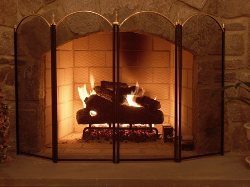 During the winter, light a fire for warmth rather than using the central heating unit. This will save you money; also, what's more fun than cuddling by the fireplace together as a family?