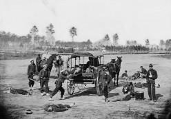 America's Civil War Beasts of Burden: Elephants and a Camel