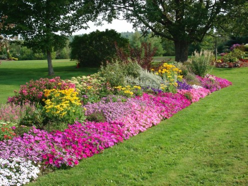 Flower beds in the yard