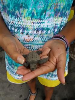 Three Reasons to Homeschool in Panama