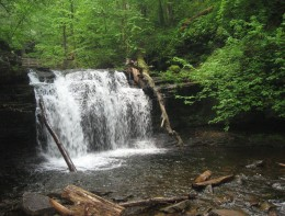 Wyandot Falls (15 feet)