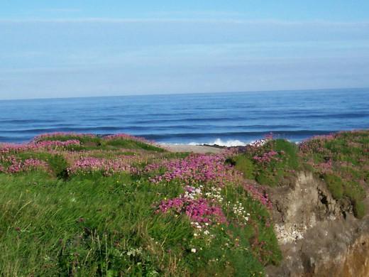 Northwest coast USA