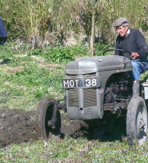 This is Ben just months after a major abdominal operation! October 2007. He's driving his ancient Ferguson tractor and preparing his market garden for next years sowing.