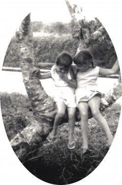 Sharing a secret on a bough of the old Frangipani tree. (by the Straits of Johore).  1966