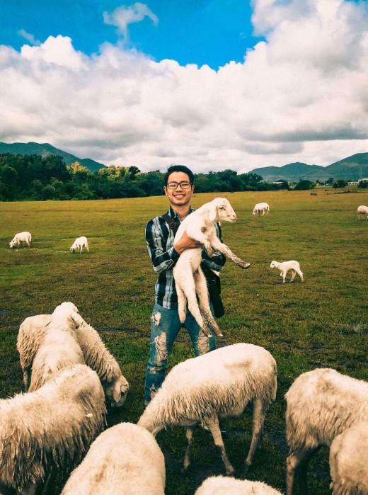 Or a nice shepherd