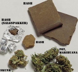 Types Of Marijuana and Hashish