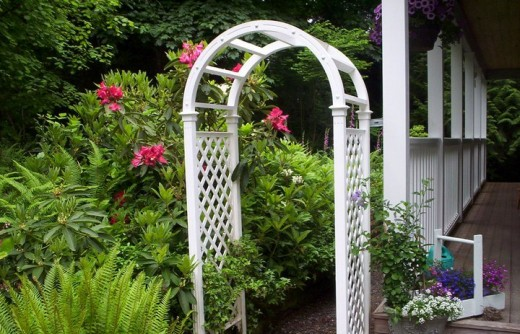 a garden arch leads back to the forest, but take the path to the left or you'll miss the shade garden
