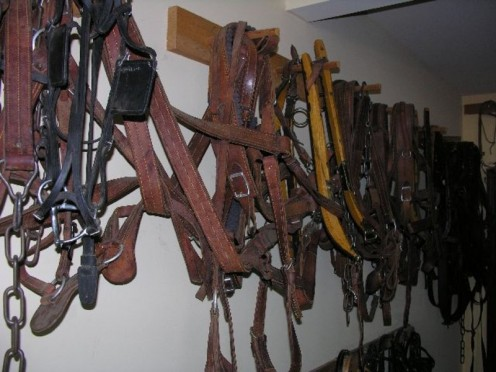 Wall display in a harness shop