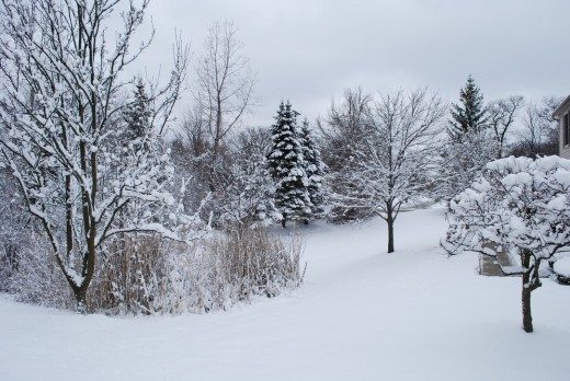 Why did most of my visitation dreams occur in the winter?