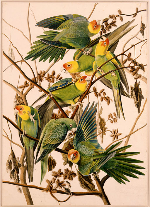 John James Audubon- Painted in 1825 in Louisiana