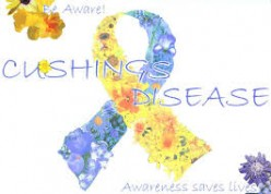 What Is Cushing's Disease?