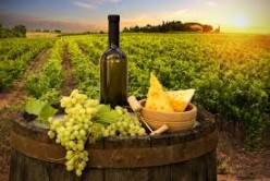 Black-Owned Wine Brands